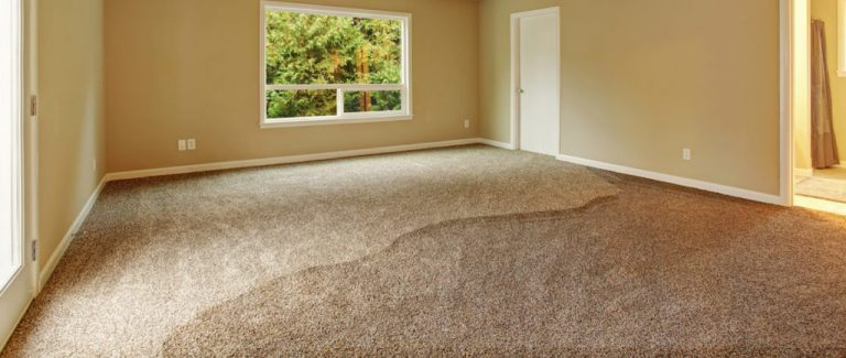 What Are The Common Causes Of Carpet Water Damage